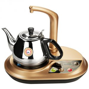 Gong Fu Tea Ceremony Style Hot Water Kettle
