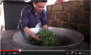 Pan frying green tea leaves to halt the oxidization process