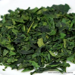 Tencha - high grade ta leaf ready for grinding into Matcha powder