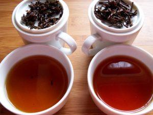 tea tasting and comparing teas